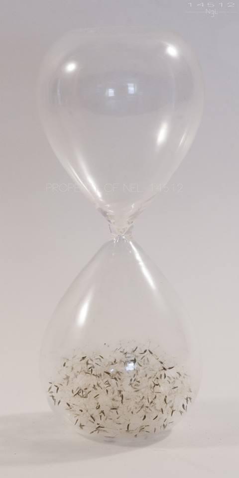 Nel-14512 sculptures – Le temps de réflexion 2014 – Assemblage-verre-graines