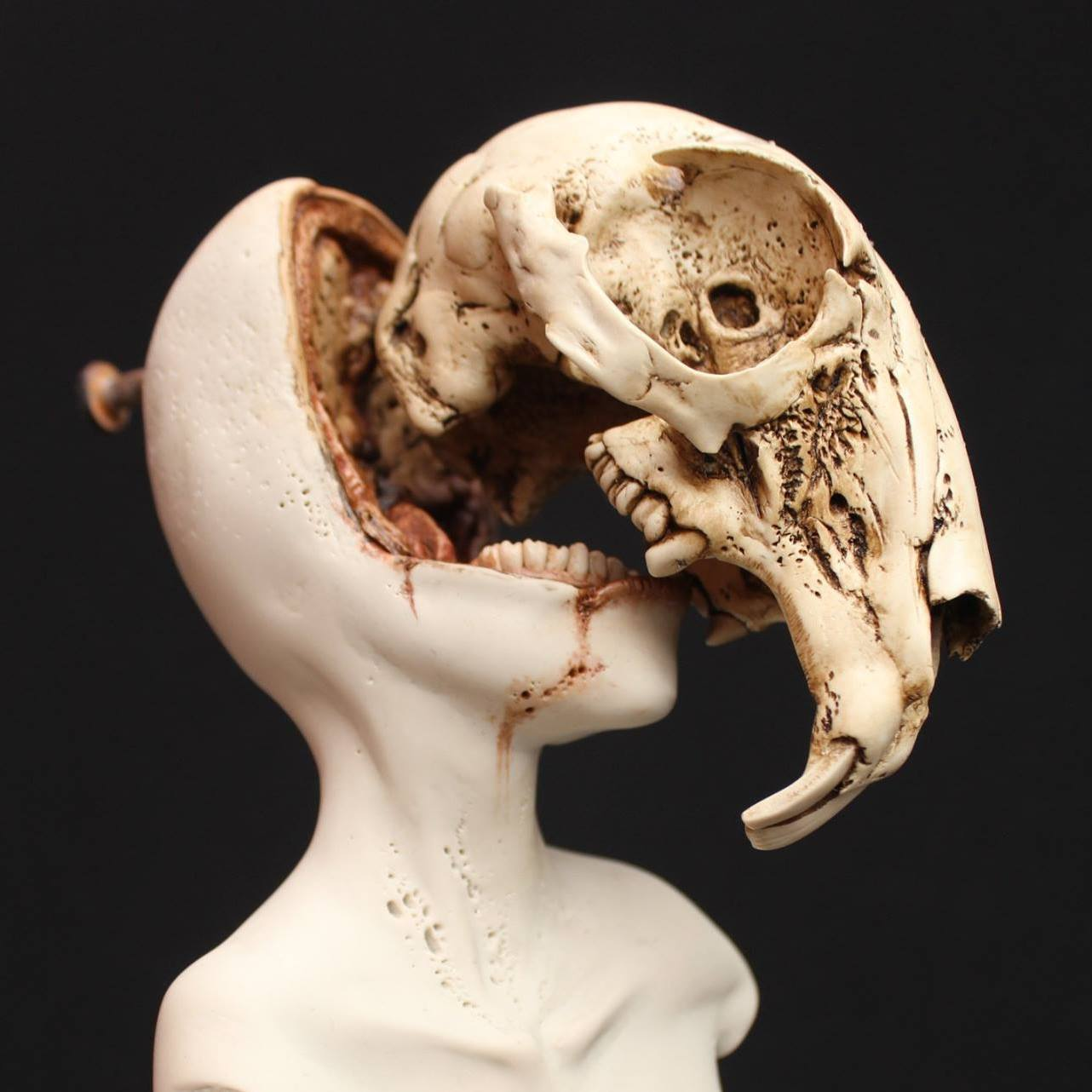Emil Melmoth, Sculptures – Chasing rabbits drowned in formaldehyde