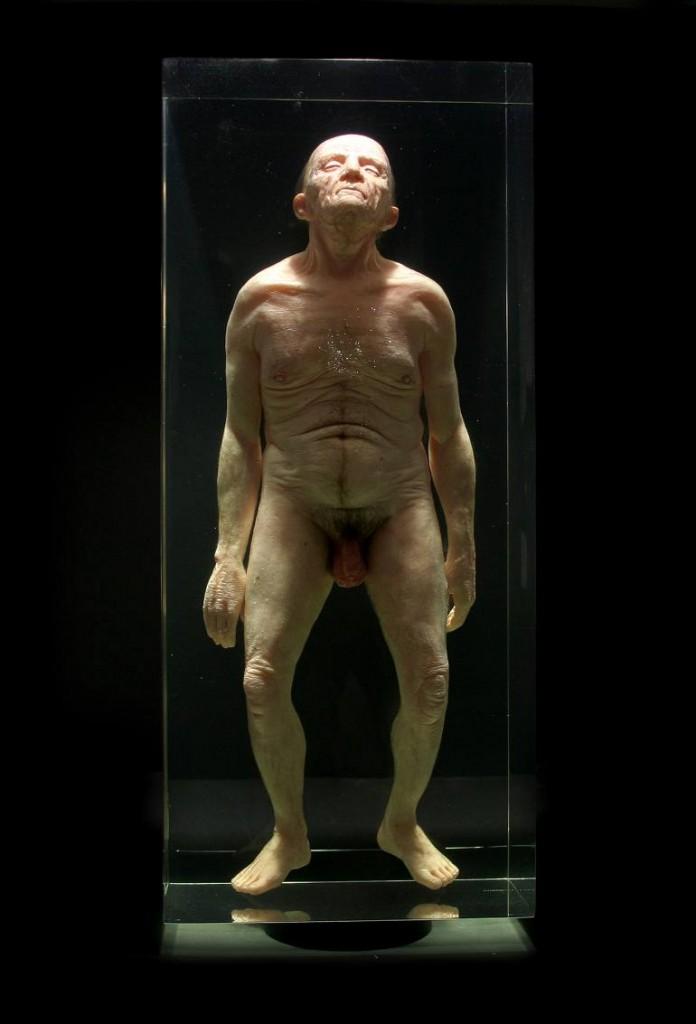 Hyper realistic Sculpture Santissimi - Natural History - AMBRA N°6