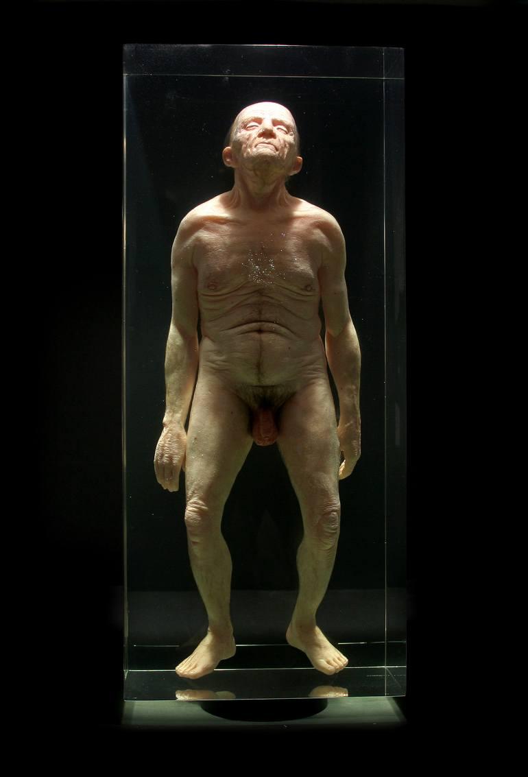Hyper realistic Sculpture Santissimi – Natural History – AMBRA N°6