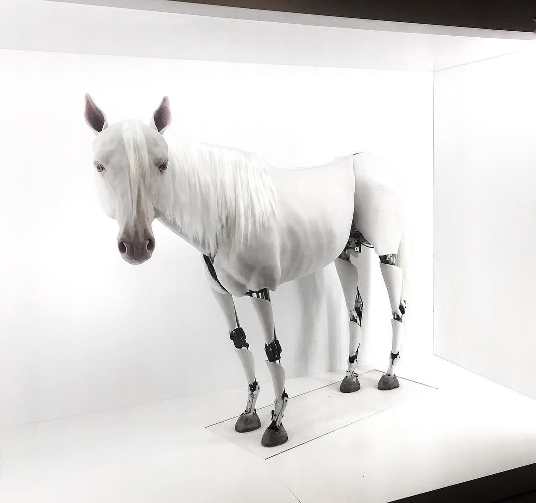 Server Demirtaş #kineticsculpture horse #contemporaryistanbul2017