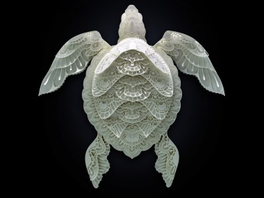 Patrick Cabral – papercuts Art – Turtle