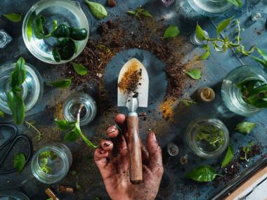 Dina Belenko – Food photography Art