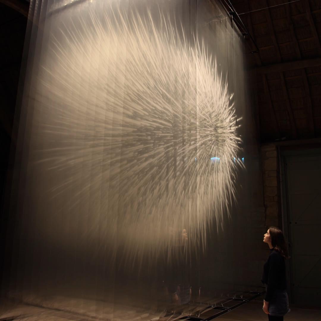 Vision II by David Spriggs