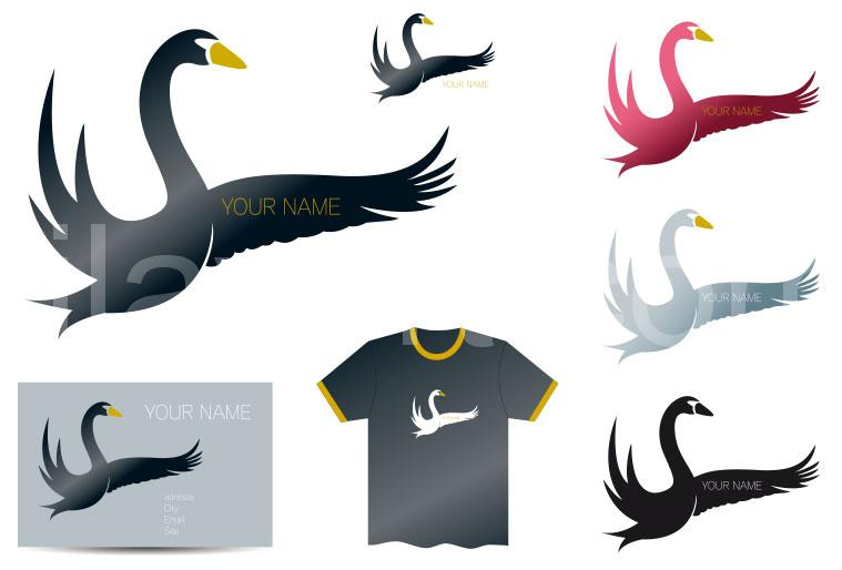 black swan book pdf free